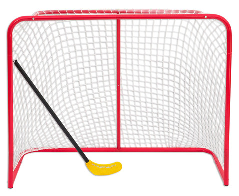 Grosses Hockey-Tor-1