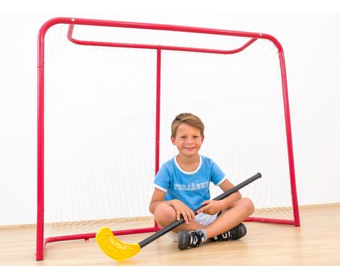 Grosses Hockey-Tor-3