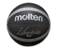 Molten Outdoor Basketball