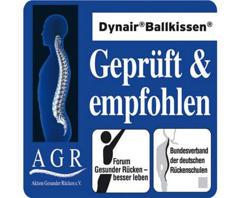 Ballkissen Dynair-3