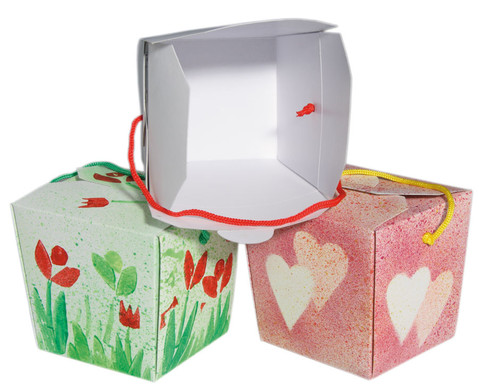 Blanko-Boxen 24 Stueck