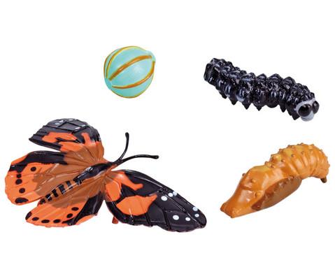 Lebenszyklus-Figuren Schmetterling