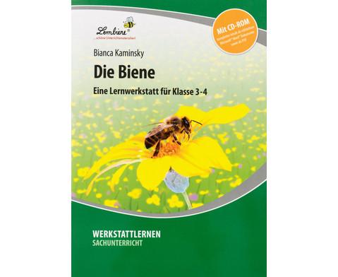 Lernwerkstatt die Biene-1