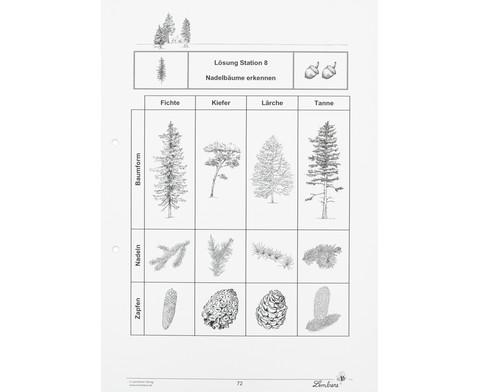 Lernwerkstatt Der Wald-4