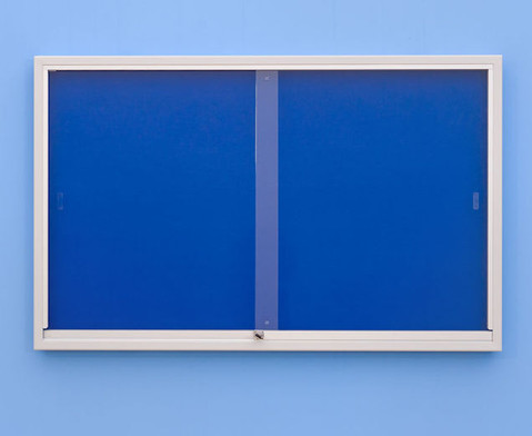 Info-Vitrine 100 cm breit mit Stahlrahmen 15 RAL-Farben-4
