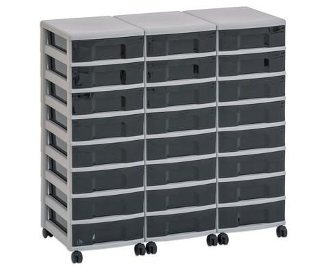 Flexeo Container-System 3 Reihen 24 kleine Boxen HxBxT 66x90x38 cm-19