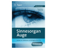 Stationentraining - Sinnesorgan Auge