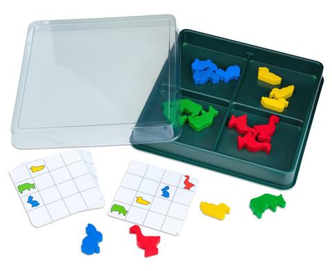 Lernbox Jede Farbe hat seinen Platz Tiere
