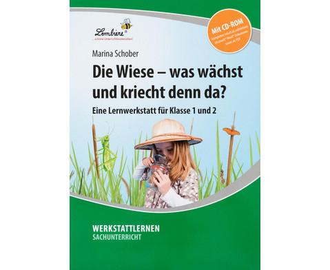 Lernwerkstatt Die Wiese - was waechst und kriecht denn da-6