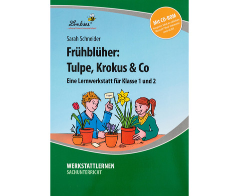 Lernwerkstatt Fruehblueher Tulpen Krokus  Co-6