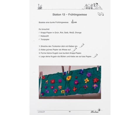 Lernwerkstatt Fruehblueher Tulpen Krokus  Co-10