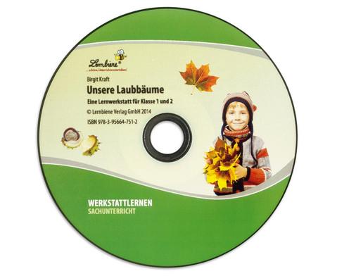 Lernwerkstatt Unsere Laubbaeume-7