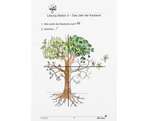 Lernwerkstatt Unsere Laubbaeume-9
