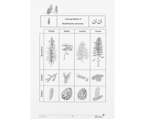 Lernwerkstatt Der Wald-11