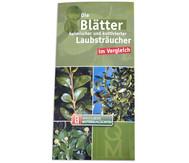 Bestimmungskarten - Blätter heimischer Laubsträucher, 10 Stück
